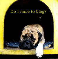 have to blog sm