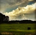 SM clouds 2