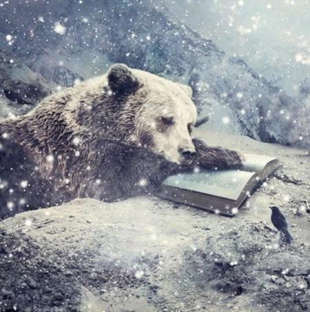 pin snowy bear