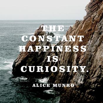 pin munro curiosity