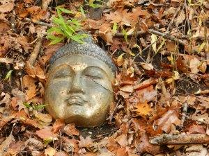 Buddha in the Woods photo: Deborah Lee Luskin