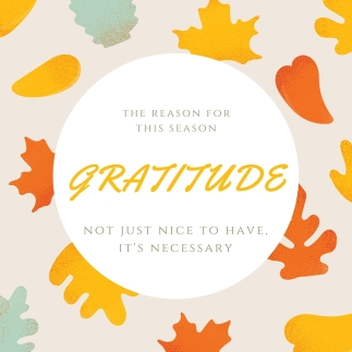 Gratitude The Reason for the Season Not just nice to have, it's necessay