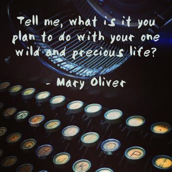 mary oliver wild life