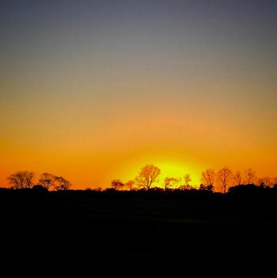 silhouette sunrise sunset