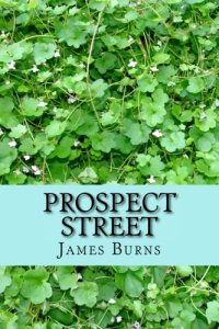 Prospect Street by James Burns
