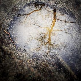IG puddle portal