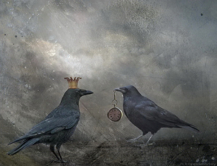 crows-time